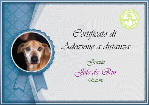 adozione_Distanza_ettorek